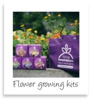 flower-growing-kits-pic