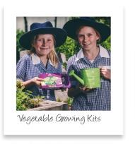 vegetable-growing-kits-pic